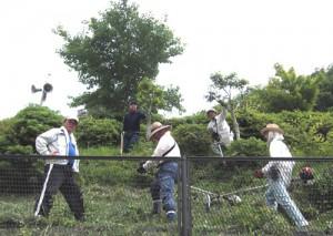草刈ボランティア